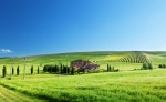 1016_green farm